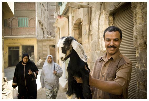 Retratos del Cairo. Egipto